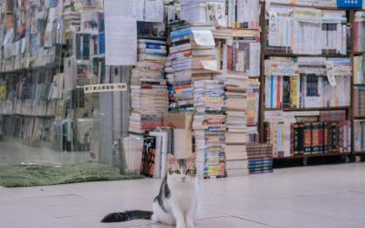 Ayudas extraordinarias a las librerías por el impacto del COVID-19